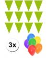 Lime groene vlaggentjes slinger met 6 gratis ballonnen